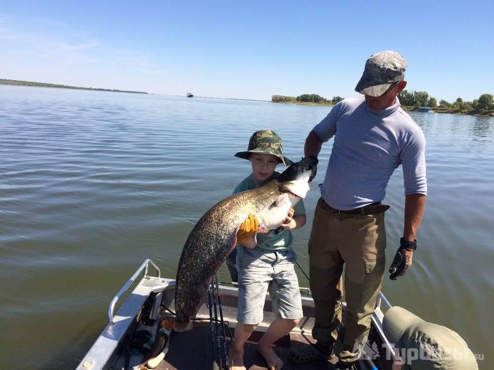 Ахтуба рыбалка семейный отдых