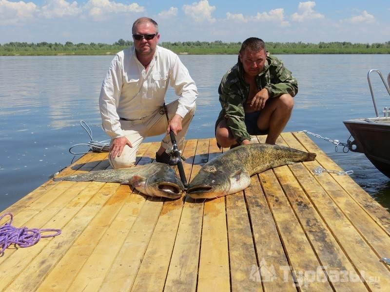 Рыбалка в астраханской области енотаевского района видео
