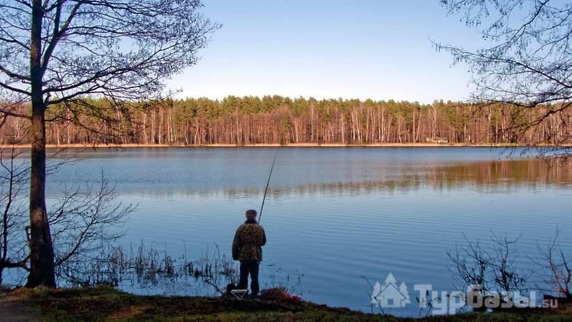 Озера в ленинградской области с рыбалкой недорого
